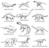 Geplaatste dinosaurussen, Tyrannosaurus rex, Triceratops, Barosaurus, Diplodocus, Velociraptor, Triceratops, Stegosaurus, skelett royalty-vrije illustratie