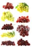 Geplaatste druiven Stock Foto