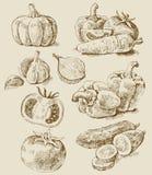 Geplaatste groenten Royalty-vrije Stock Afbeelding