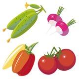 Geplaatste groenten Royalty-vrije Stock Foto