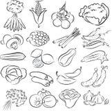 Geplaatste groenten vector illustratie