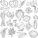 Geplaatste groenten Stock Afbeeldingen
