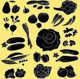 Geplaatste groenten Royalty-vrije Stock Afbeeldingen