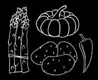 Geplaatste groenten Stock Foto