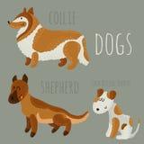 Geplaatste honden Stock Afbeelding