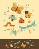 Geplaatste insecten Royalty-vrije Stock Foto's