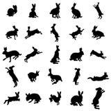 Geplaatste konijnsilhouetten Royalty-vrije Stock Afbeeldingen