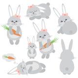 Geplaatste konijntjes Royalty-vrije Stock Afbeeldingen