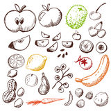 Geplaatste krabbel - vruchten en groenten Royalty-vrije Stock Foto
