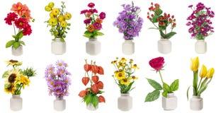 Geplaatste Minimalistic bloemenboeketten Stock Afbeelding