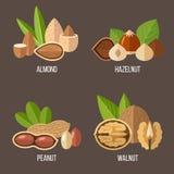 Geplaatste noten stock illustratie