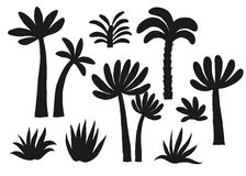 Geplaatste palm zwarte silhouetten Stock Afbeelding