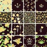 Geplaatste patronen Stock Fotografie