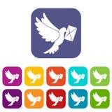 Geplaatste pictogrammen van de duif de dragende envelop Stock Foto