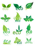 Geplaatste pictogrammen van het Eco de vriendschappelijke embleem Stock Fotografie