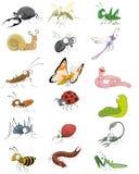 Geplaatste pictogrammeninsecten Stock Foto's
