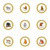Geplaatste primaatpictogrammen, beeldverhaalstijl stock illustratie