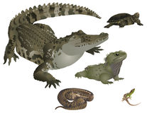 Geplaatste reptielen royalty-vrije illustratie