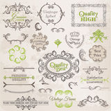 Geplaatste vector: De de kalligrafische Elementen van het Ontwerp en Decoratie van de Pagina Stock Fotografie