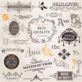 Geplaatste vector: De kalligrafische Elementen van het Ontwerp royalty-vrije illustratie