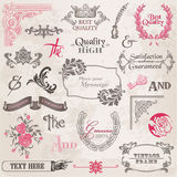 Geplaatste vector: De kalligrafische Elementen van het Ontwerp Stock Foto's