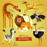 Geplaatste vector - leuke wilde dieren van Afrika Royalty-vrije Stock Afbeeldingen