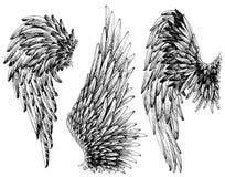 Geplaatste vleugels vector illustratie