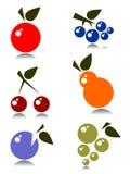 Geplaatste vruchten Stock Foto