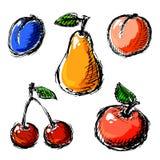 Geplaatste vruchten Royalty-vrije Stock Foto's