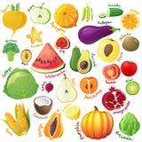 Geplaatste vruchten en groenten Stock Foto