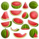 Geplaatste watermeloenpictogrammen, beeldverhaalstijl royalty-vrije illustratie