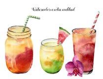 Geplaatste waterverf exotische cocktails Hand geschilderde de zomer tropische drank die op witte achtergrond wordt geïsoleerd Voe vector illustratie