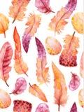 Geplaatste waterverfveren Hand getrokken vectorillustratie met kleurrijke veren Stock Fotografie