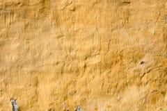 Gepleisterde gele muur Klassieke voorzijde Stock Foto