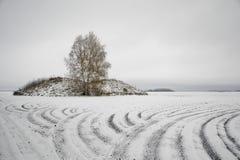 Geploegd gebied in de winter Stock Afbeelding