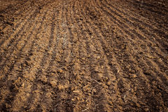 Geploegd gebied, grond dicht omhoog, landbouwachtergrond Stock Fotografie