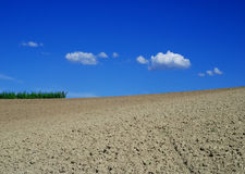 Geploegd gebied in Monferrato Stock Foto's