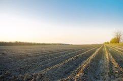 Geploegd gebied na cultuur voor het planten van landbouwgewassen Landschap met Landbouwgrond bedden voor installaties Landbouw, stock foto