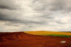 Geploegd gebied na een regenonweer Royalty-vrije Stock Afbeeldingen