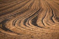 Geploegde aarde, de grond Royalty-vrije Stock Foto