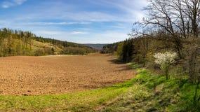 Geploegde gebied, bos en blauwe hemel met wolken Stock Fotografie