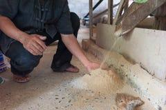 Geprägter Reis Lizenzfreie Stockfotos