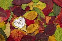 Gepresste Blätter und Häkelarbeitelement Stockbild