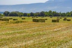 Gepresste Strohbriketts nach links der Ernte, die auf einem Feld bei Sonnenuntergang liegt Lizenzfreie Stockfotos