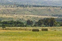 Gepresste Strohbriketts nach links der Ernte, die auf einem Feld bei Sonnenuntergang liegt Lizenzfreie Stockbilder
