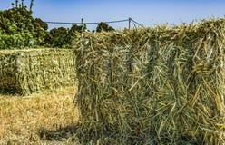 Gepresste Strohbriketts nach links der Ernte, die auf einem Feld an der Sonne liegt Stockbild