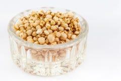 Gepuft quinoa zadenchenopodium - quinoa Royalty-vrije Stock Afbeelding