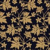Gerânio da flor Teste padrão floral sem emenda Imagem de Stock