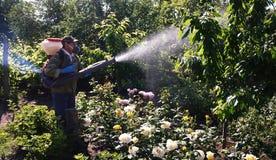 Gerät für das Sprühen von Anlagen im Garten Details und Nahaufnahme stockfotografie