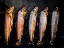 Geräucherte Fische Stockfoto